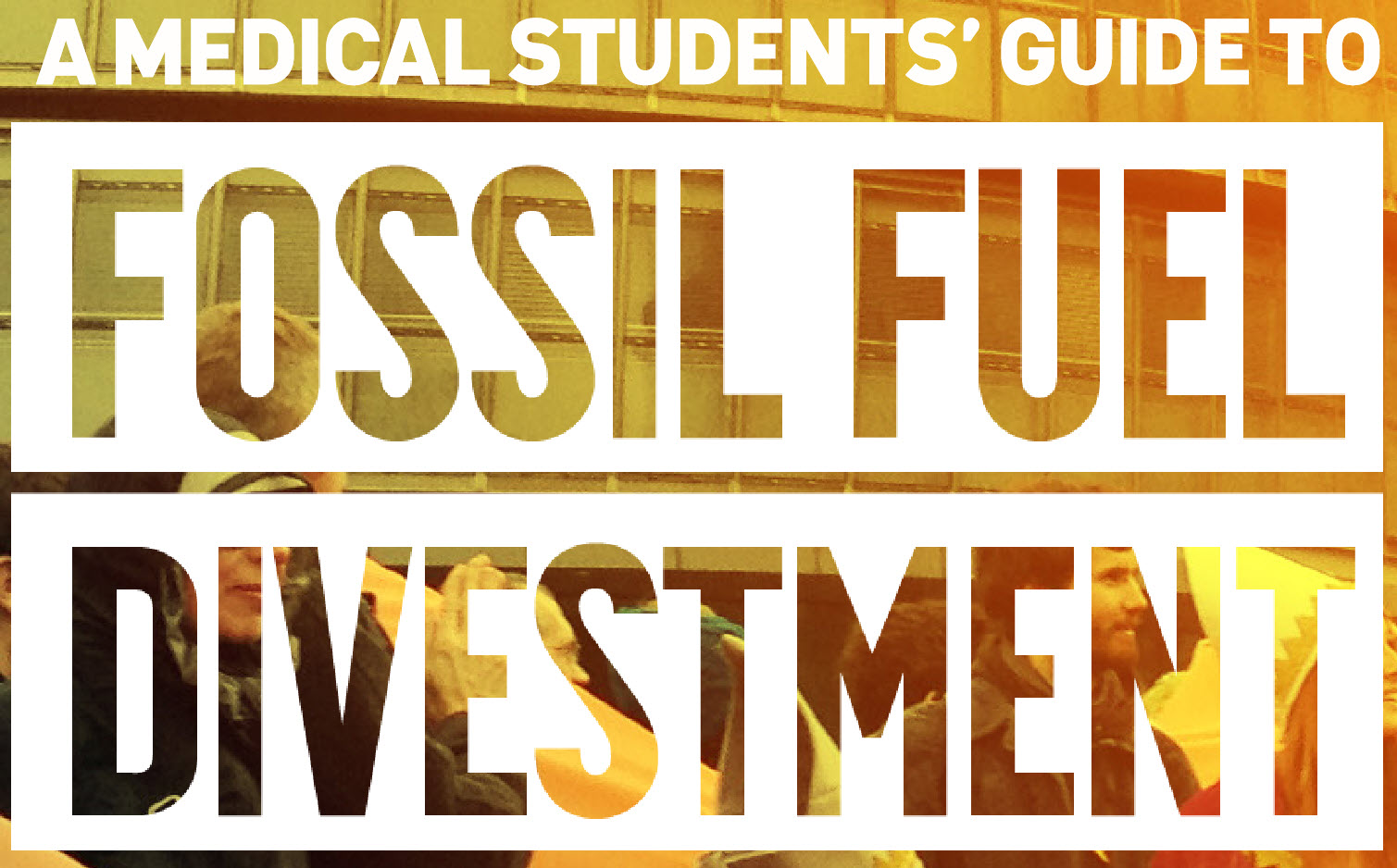 Medical Students Guide To Divestment