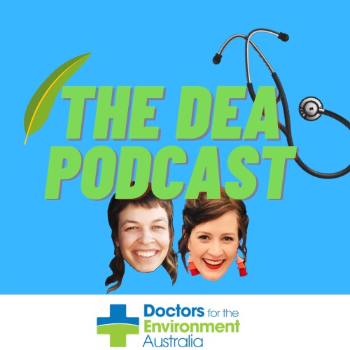 New DEA Podcast! Sustainable menstrual products